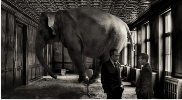 Naming the Elephant in the Room